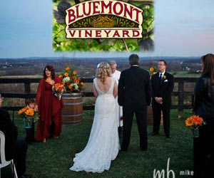 bluemontvineyard Weddings