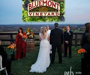 bluemontvineyard Weddings