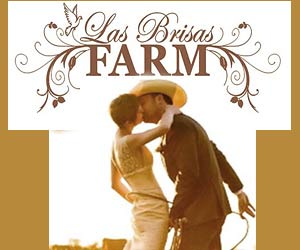 La Brisa Farm Weddings