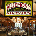 Virginia Country Weddings at the Bluemont Vineyard, VA Wedding Locations